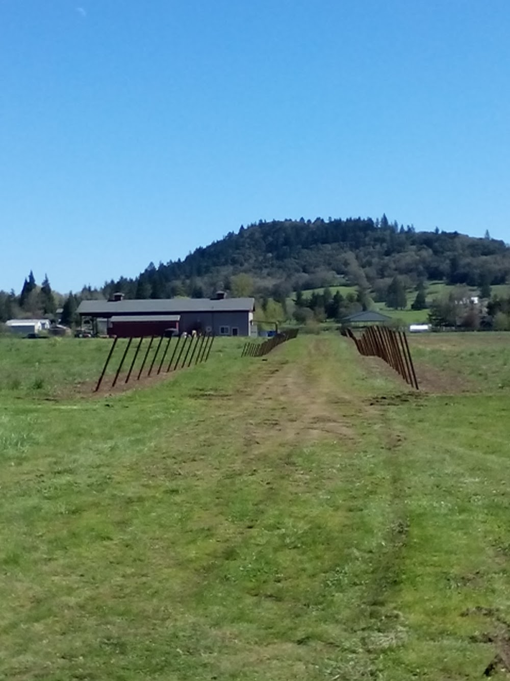 Teso'aria Vineyard and Winery Annex